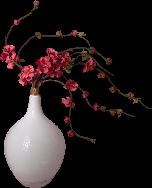 png vazoda i ekler png vir gok v z ban png flowers in. Black Bedroom Furniture Sets. Home Design Ideas